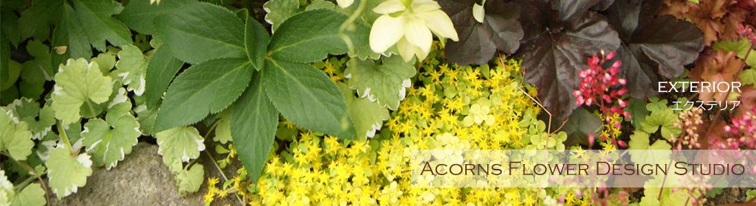 玄関周りの装飾や花壇の植え込み・お庭のお花のご提案・施工を致します